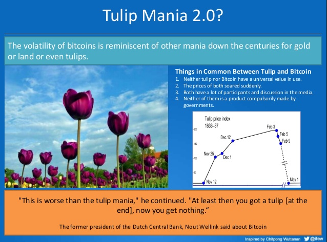 Tulip vs Bitcoin