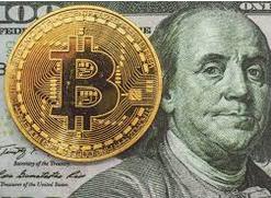 crypto dollara